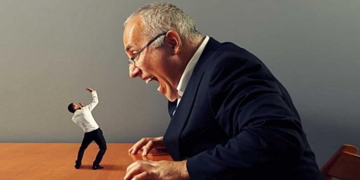 capo stressante leadership